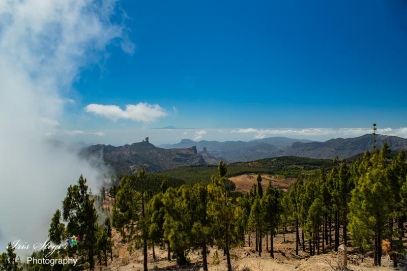 Pico de las Nieves (