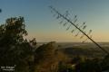 Ausblick bei Sonnenuntergang Santuari de la Concolacio