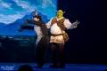 Andreas Wolfram als Esel und Andreas Lichtenberger als Shrek