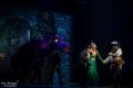 Drachenlady mit Shrek, Esel & Fiona