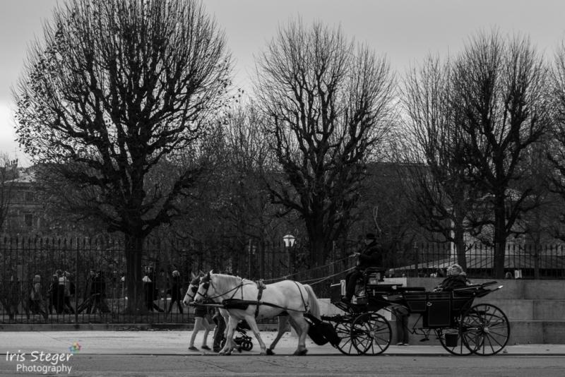 Faiker in Wien